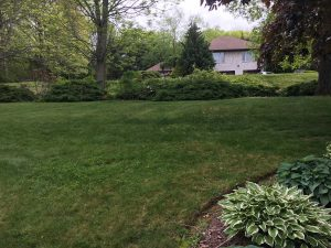 Home construction - Best Lawn Care in New London