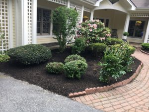 Landscaping Connecticut Garden Work