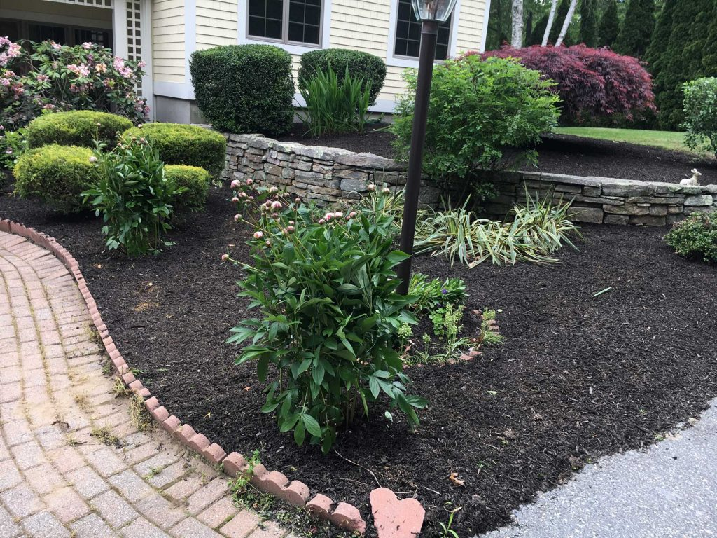 Landscaping Mulch Replacement
